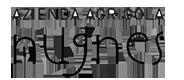 Azienda-Agricola-Nugnes_vino_Campania_80